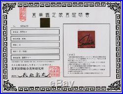 Sui Ishida Tokyo Ghoul hand signed autograph photo with coa